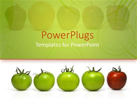 Slide deck with four green tomatoes and a red one lined up