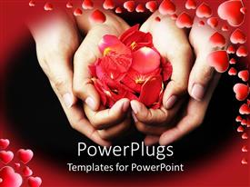 Presentation theme having four hands holding red rose petals on black background with red frame filled with red hearts