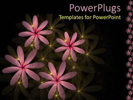 Slides enhanced with four pink flowers with yellow lights on a black background