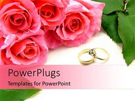 Presentation theme enhanced with four pink roses and two wedding rings on a white background