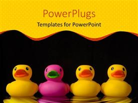 Presentation design enhanced with four rubber ducks three yellow ducks and one pink duck