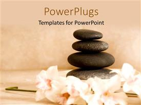 PPT theme featuring four spa stones arranged on each other with some flowers