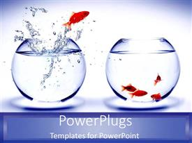 PowerPlugs: PowerPoint template with gold fish jumping out of blue fish tank to join team as a metaphor
