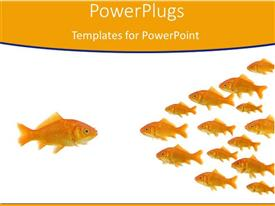 Slide set consisting of gold fish leader stands out in crowd orange background