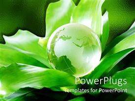 PPT layouts having green earth globe on huge green leaves and green background