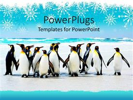 Audience pleasing slide set featuring group of penguins on an icy background with falling snowflakes