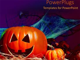 Audience pleasing PPT theme featuring halloween decorations pumpkin bat spider webs spooky scary trick or treat