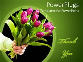 Beautiful theme with hand holding pink tulip bouquet, Thank you