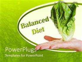 Amazing presentation design consisting of hand holding white lettuce and green words balanced diet on white and green background symbolizing balanced and healthy diet
