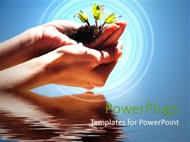 Presentation theme featuring hands holding sprouting plant in soil just above water body
