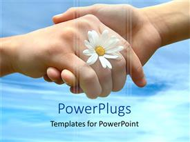 Audience pleasing PPT theme featuring hands shaking with white daisy, blue sky background