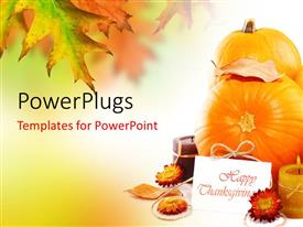 Elegant PPT theme enhanced with happy thanksgiving card with fruits and flowers for decoration