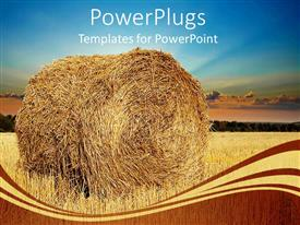 Top Wheat PowerPoint Templates, Backgrounds, Slides and PPT