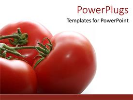 PPT theme having healthy recipes big pretty healthy fresh and juicy tomatoes