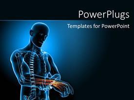 Anatomy Powerpoint Templates W Anatomy Themed Backgrounds