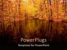 PPT Theme Enhanced With Landscape Of Peaceful Pond Trees Woods Nature Template Size