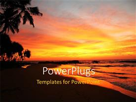 Theme enhanced with lAndscape of tropical beach with palms and sunset on horizon
