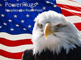 Beautiful presentation design with large black and white  eagle with a USA flag background