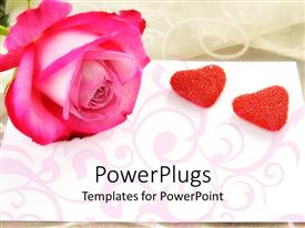 Slide set featuring large pink rose with two heart shaped stones beside