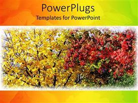 Audience pleasing slide deck featuring leaves changing colors in fall, autumn colors