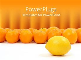 PPT theme having lemon and oranges on white and orange background