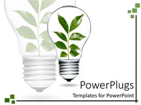 Slide deck having light bulb with plant and green leaves growing and living as a metaphor of environment over technology on a white background