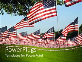 Beautiful presentation theme with lots of American flags on a wide green grass field