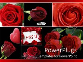 Presentation having love collage with red roses, silver hear padlock, I love you