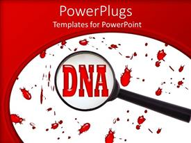 Colorful PPT theme having magnifying glass on DNA word blood spots on white background framed by red background