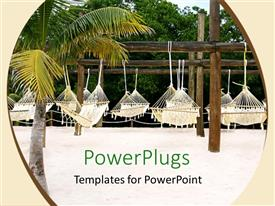 Presentation theme with many hammocks hanging on wooden poles, palm tree and trees in the background