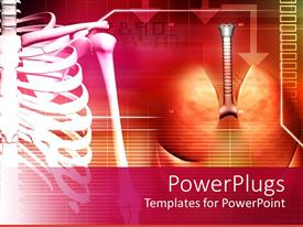 5000 lung powerpoint templates w lung themed backgrounds slide set consisting of medical theme with human spine and lungs on abstract background toneelgroepblik Image collections