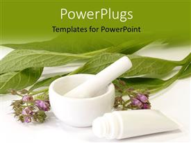 Herbal Medicine Powerpoint Templates W Herbal Medicine Themed Backgrounds