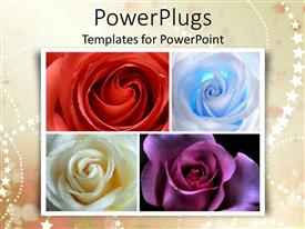 Beautiful PPT theme with a number of colorful flowers with stars in the background