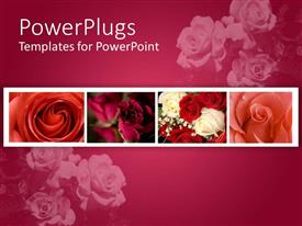 Presentation theme having a number of flowers with pinkish background