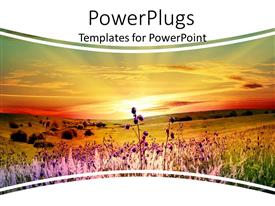 PPT theme consisting of a number of flowers with sunset in the background