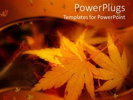 Presentation design consisting of a number of leaves in the fall