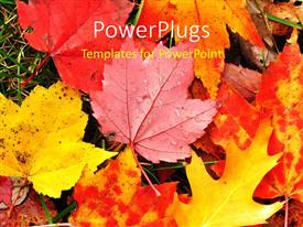 Presentation design enhanced with a number of leaves in the fall with place for text