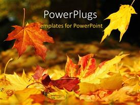 Elegant presentation theme enhanced with a number of leaves in the fall season