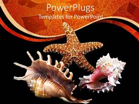 PPT theme having a number of sea creatures with black background