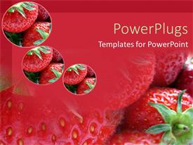 PPT theme enhanced with a number of strawberries with their reflection in the background