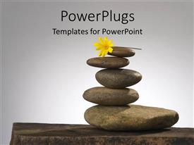PPT theme with a number of zen stones witha  flower and grey background