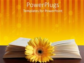 PPT layouts consisting of open book behind yellow flower against striped floral orange background