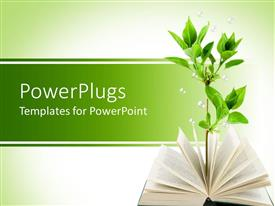PPT layouts enhanced with opened book with green plant growing out of the book's pages on light green background