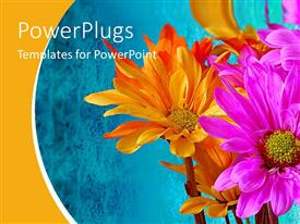 PPT theme featuring orange and pink flowers on abstract blue background