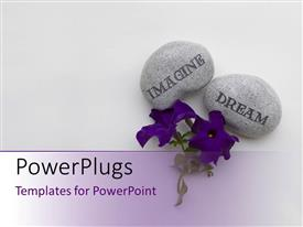Amazing slides consisting of a pair of flowers with purple background and place for text