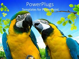 Amazing PPT theme consisting of a pair of parrots with leaves in the background