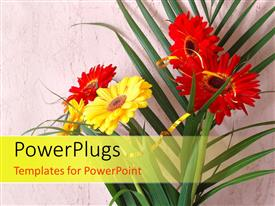 Amazing slides consisting of palm leaves with red and yellow daisies on rough background