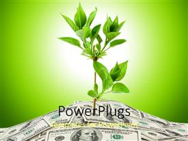 5000 plants powerpoint templates w plants themed backgrounds slide set consisting of a plant with its roots inside the currency notes toneelgroepblik Image collections