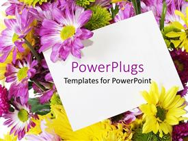 Theme with purple and yellow spring flowers behind a blank note card
