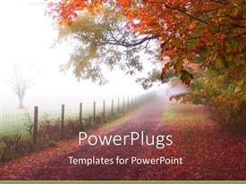 PPT layouts featuring quiet country road in autumn fog